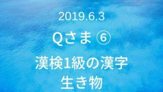 漢検1級の漢字
