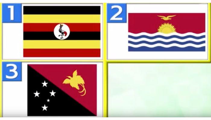 パプアニューギニアの国旗は?