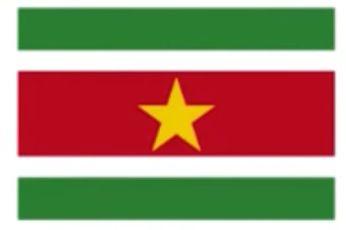スリナム共和国の国旗