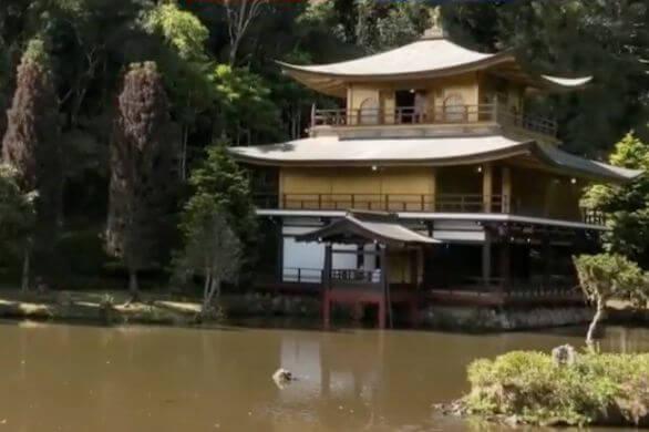 ブラジル金閣寺