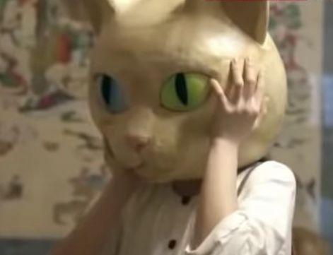 雲林寺の猫かぶり