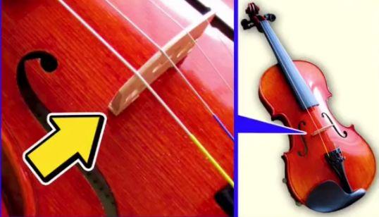 弦楽器の「こま」